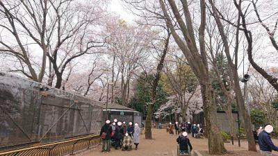 夢見ヶ崎動物公園(神奈川県川崎市幸区)